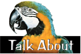 Talkabout Logo4 cropped lr